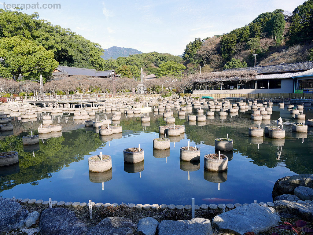 Kyushu2014_0061