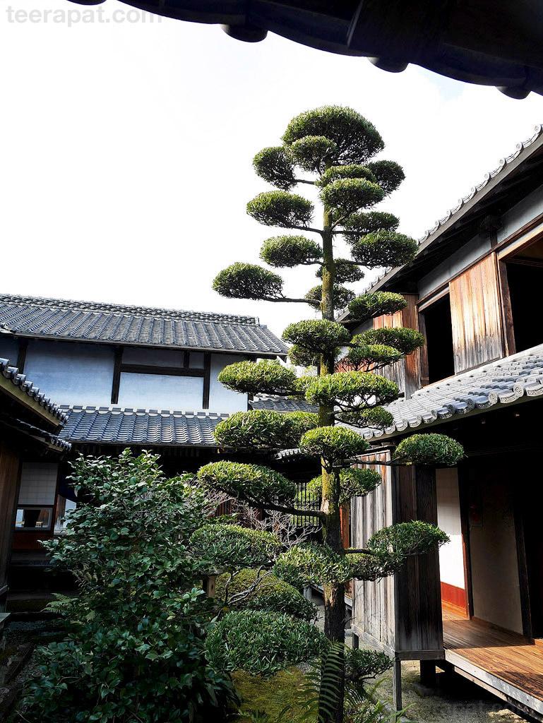 Kyushu2014_0271
