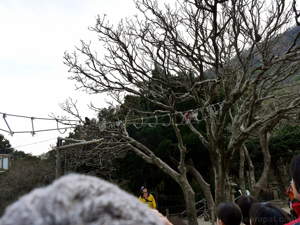 Kyushu2014_0918