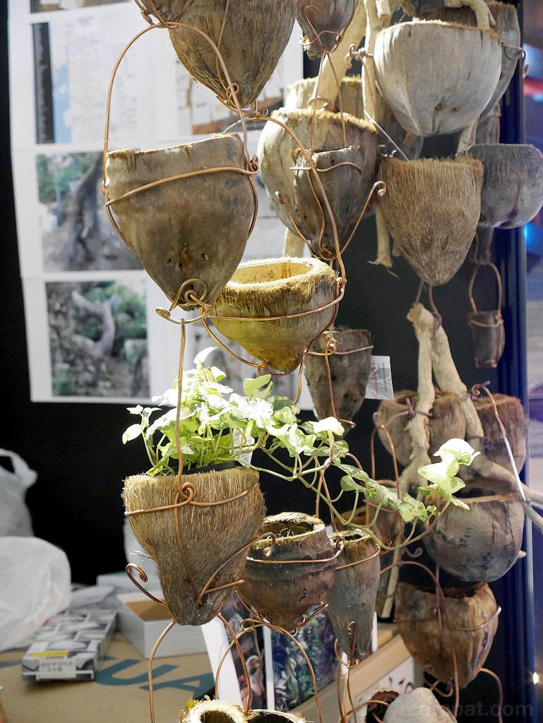 นำกะลามะพร้าวมาดัดแปลงเป็นที่ใส่ต้นไม้ เจ้าของเป็นฝรั่งครับ อันนี้บ้านเราก็มีเยอะแยะ ไม่เห็นแปลก ฮาๆ